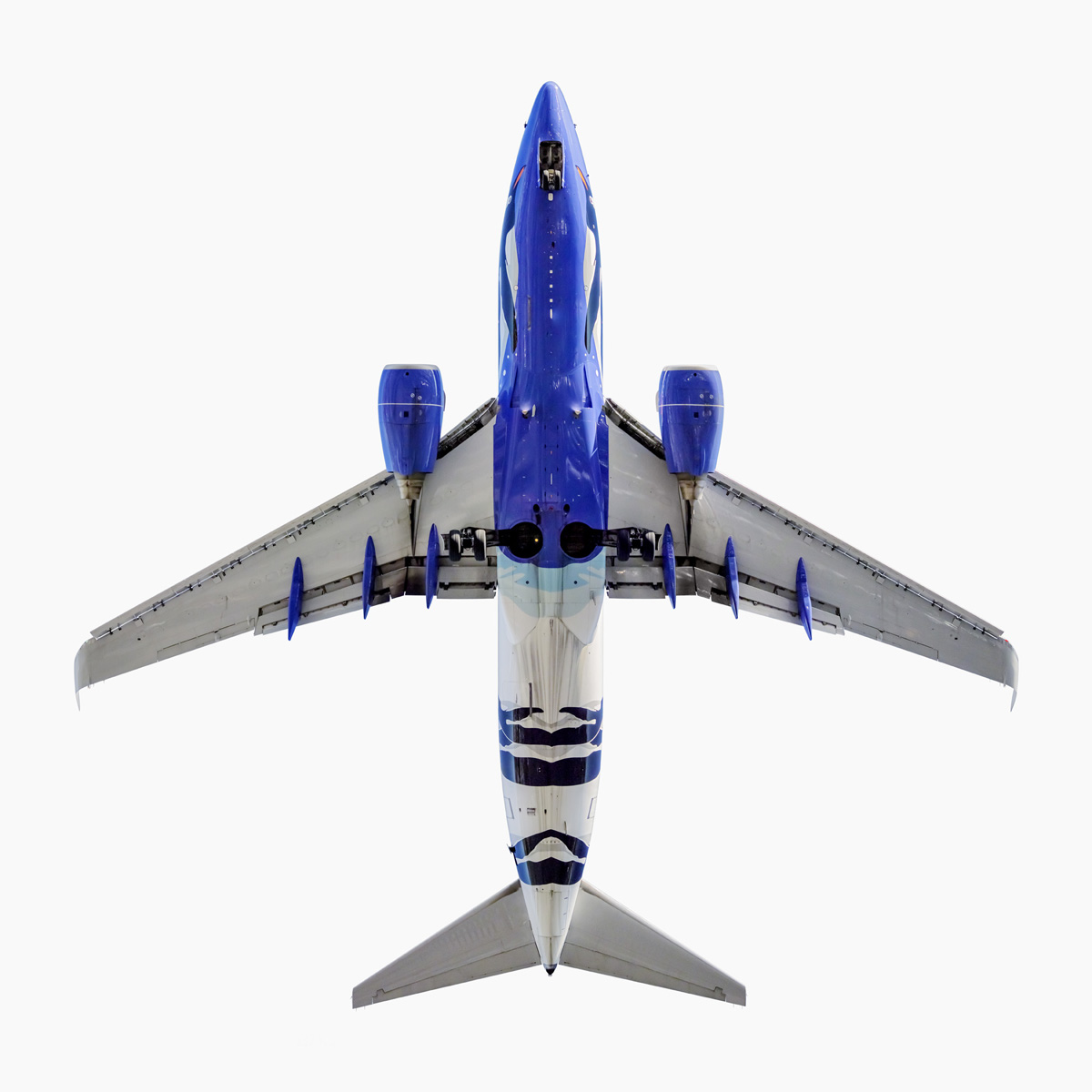 Southwest Airlines Penguin One Boeing 737-700